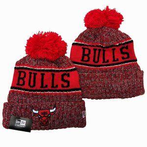 Chicago Bulls Beanies Hats (10)
